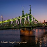 The Freedom Bridge, Budapest, Hongrie