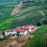 Vignobles, Cherasco Italie