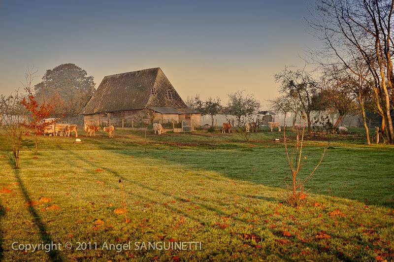 Triqueville, Normandie, Le clos vorin